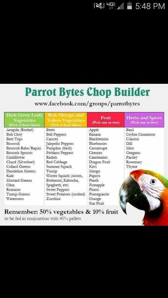 Parrot Chop