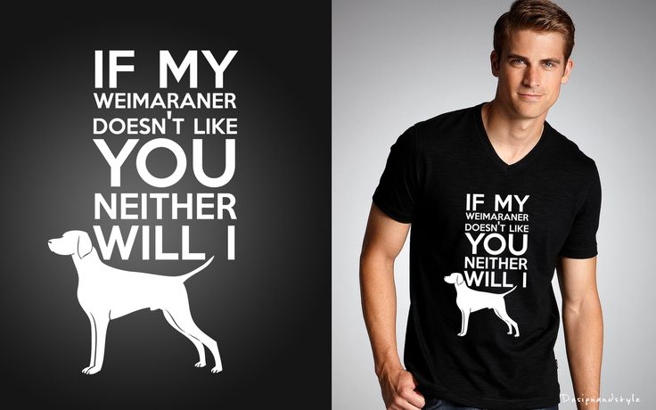 "<3 Dog Lover <3 ...""if-my-weimaraner-doesn-t-like-you-neither-will-i"" (✿◠‿◠)"