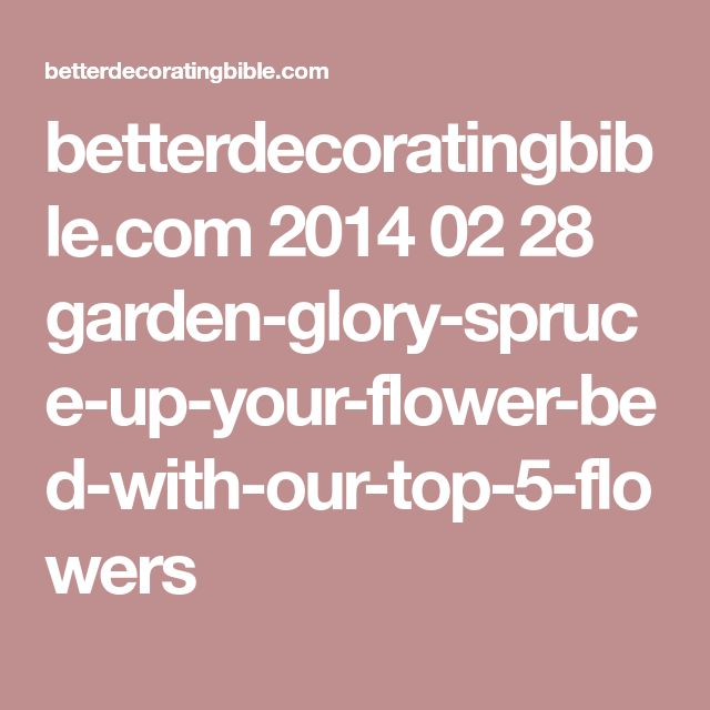 betterdecoratingbible.com 2014 02 28 garden-glory-spruce-up-your-flower-bed-with-our-top-5-flowers