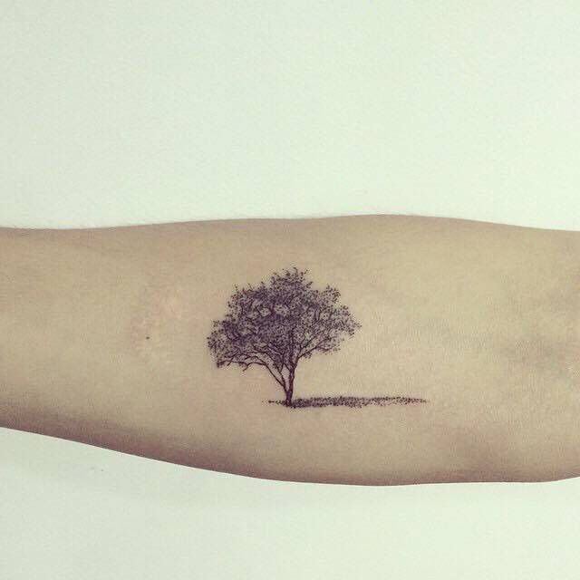Tree                                                       …