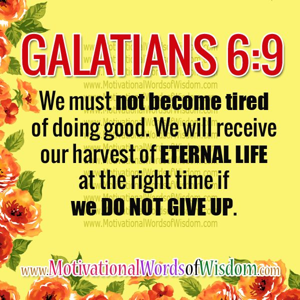 Bible Quotes Never Give Up: 3989 Best Images About ♥Bible Verses To Live By♥ On