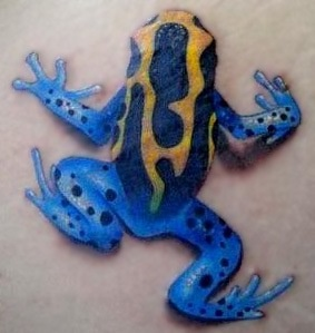 Frog tattoo love the color of this one