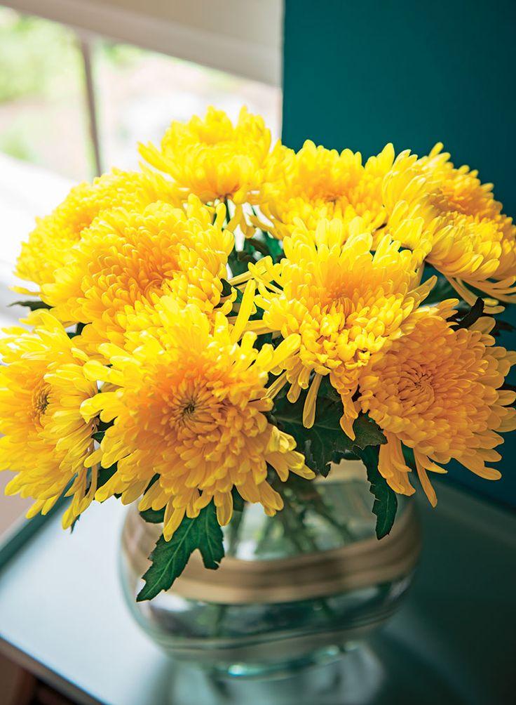 #Truffaut - Bouquet de soleil pour illuminer les journées d'automne