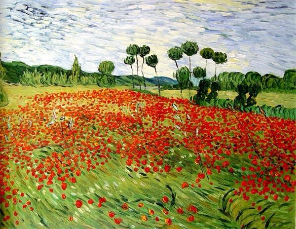 Van Gogh Poppy Fields