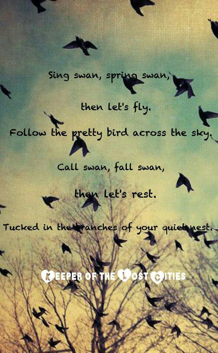 Turtle Poetry
