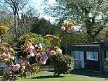 Holiday Villa in Camelford, Cornwall, England E14507