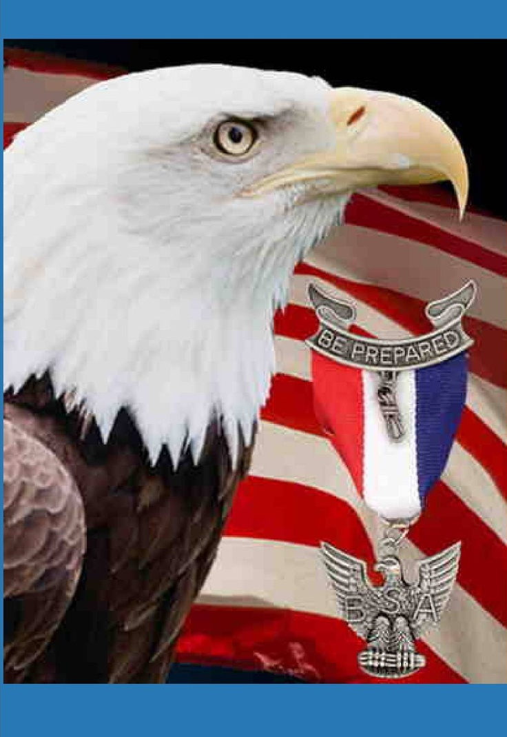 Eagle court of honor program bing images for Eagle scout powerpoint template