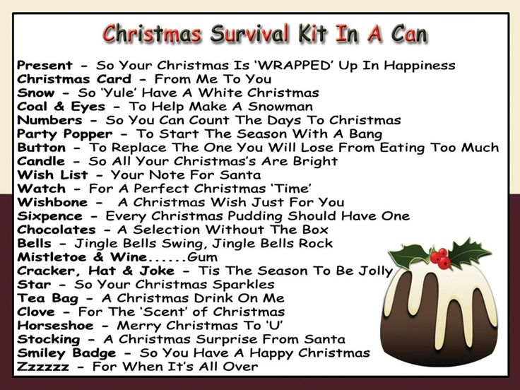 Humorous Christmas Survival Kit In A Can. Novelty Fun Xmas Gift ...: pinterest.com/pin/515732594799142613