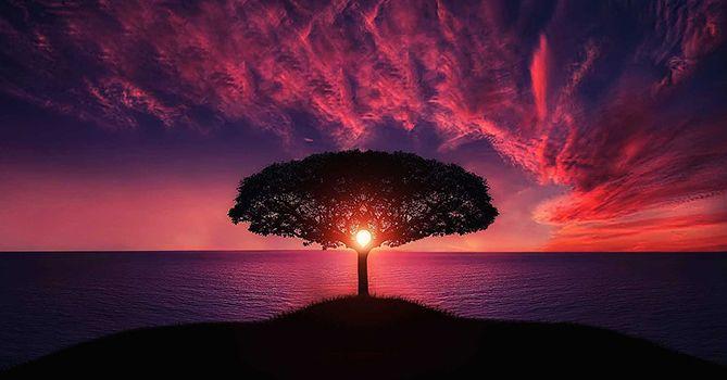 Zbavte se falešné představy času. Čas amysl jsou neoddělitelné. Odstraňte ze své mysli čas ačas se zastaví, pokud jej nebudete chtít použít.Ztotožňovat se smyslí znamená být uvězněn včase, žít téměř neustáleve vzpomínkách nebo očekávání. To vede kneustálému přemýšlení ominulosti nebo budoucnosti akneochotě přijímat přítomný okamžik. Toto nutkání vzniká, protože minulost vám dává totožnost abudoucnost vám…