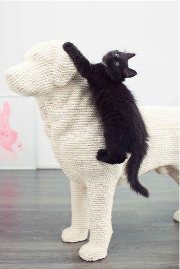 les 25 meilleures images propos de arbre chat sur pinterest design int rieur. Black Bedroom Furniture Sets. Home Design Ideas
