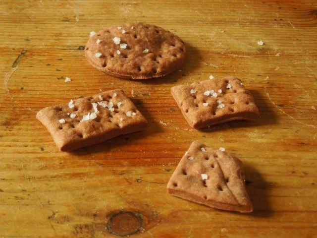 Cocoa and Salt Cracker