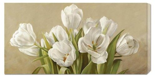 'Tulipani bianchi' by Serena Biffi