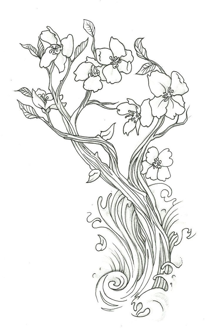 How To Draw A Flower Tattoo Step 2 Cherry Blossom By Endofnonentity
