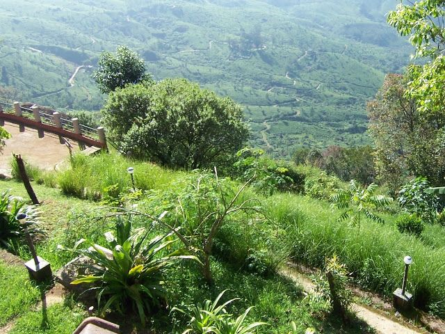 Munnar, Kerala, India. Wow, what a view of the tea plantations. http://trekdigest.blogspot.ca/2010/01/tea-plantations-munnar-kerala.html