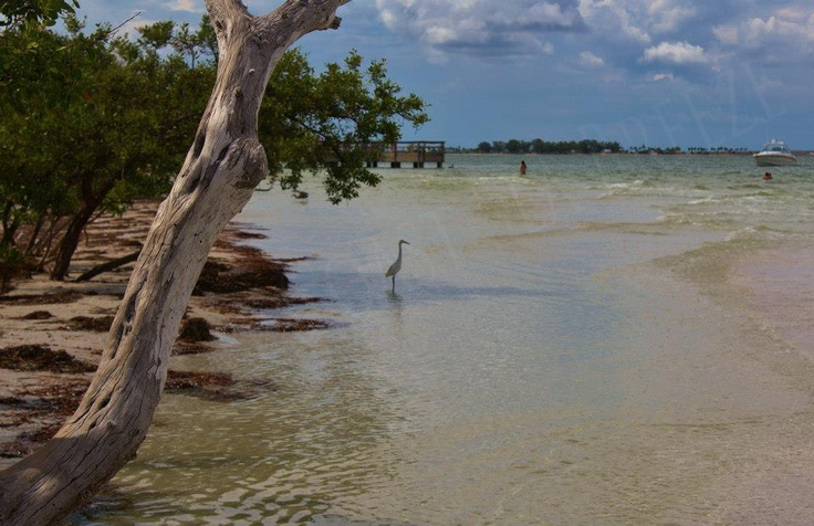 Things To Do In And Around Fort Myers