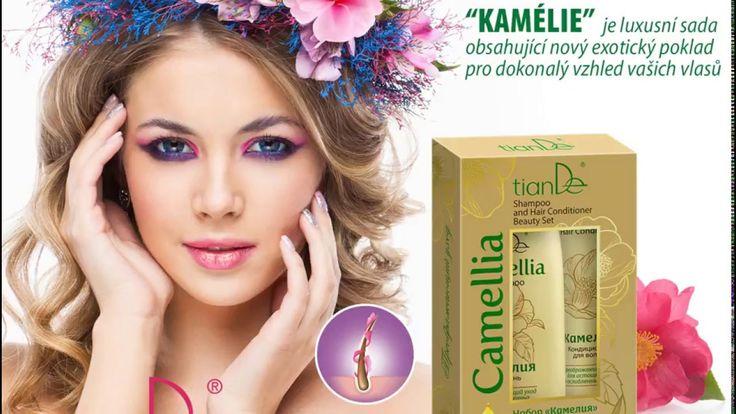 Výsledek obrázku pro tiande šampony kamélie    http://tiande.eu/~paKLl