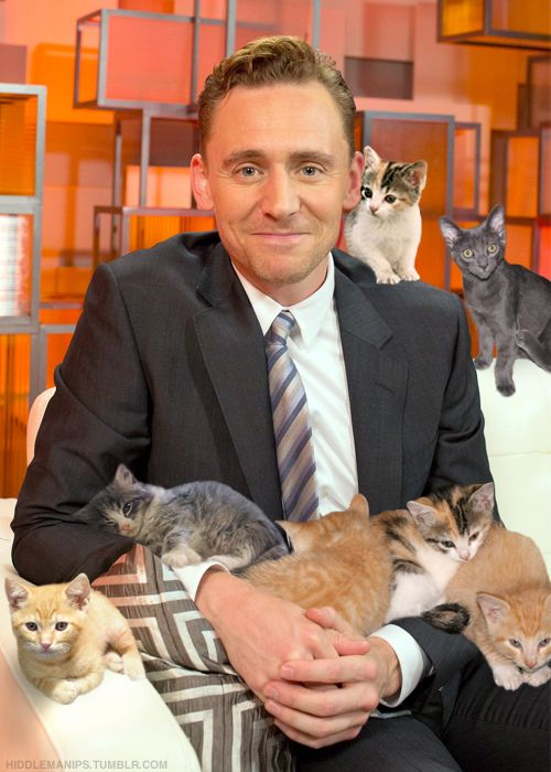 Tom Hiddleston and kittens.  The Perfect Man. Thank you, Photoshop, thank you.