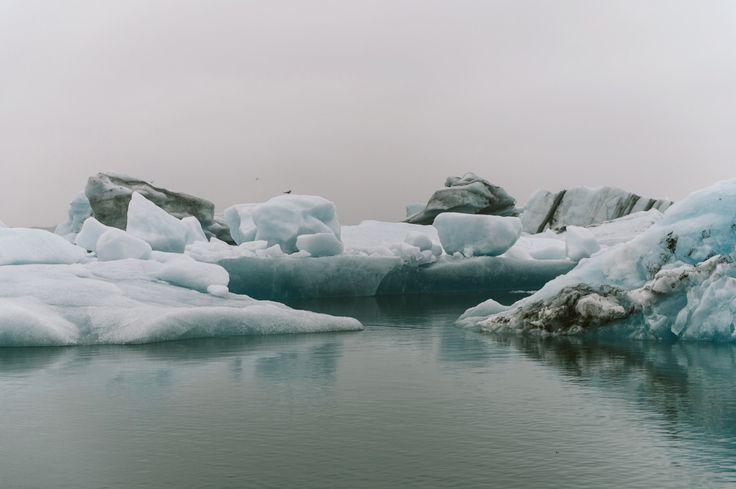 #landscape #photography #summer #travelling #trip #glacierlake #icebergs #Iceland #roadtrip #moody #elements