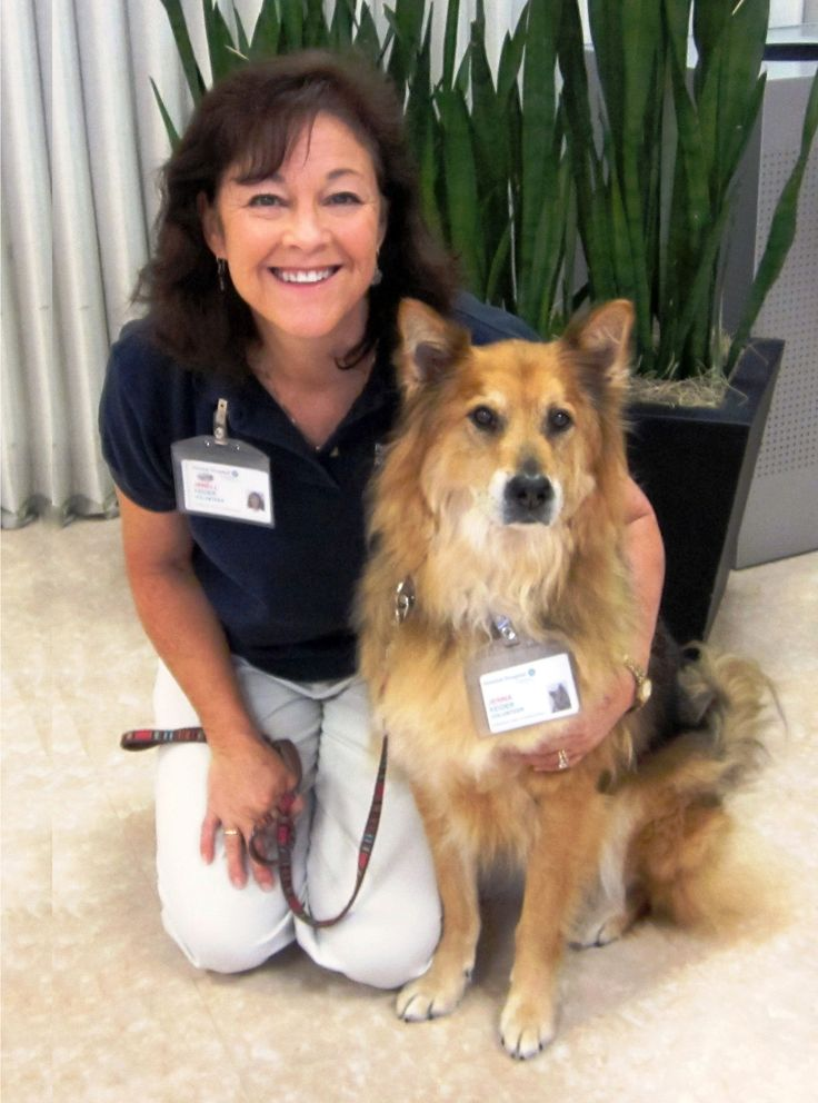 pet therapy for heart and soul Radiation therapy diagnostic imaging  how do i know if my pet has heart disease  many different types of heart disease can result in heart failure.