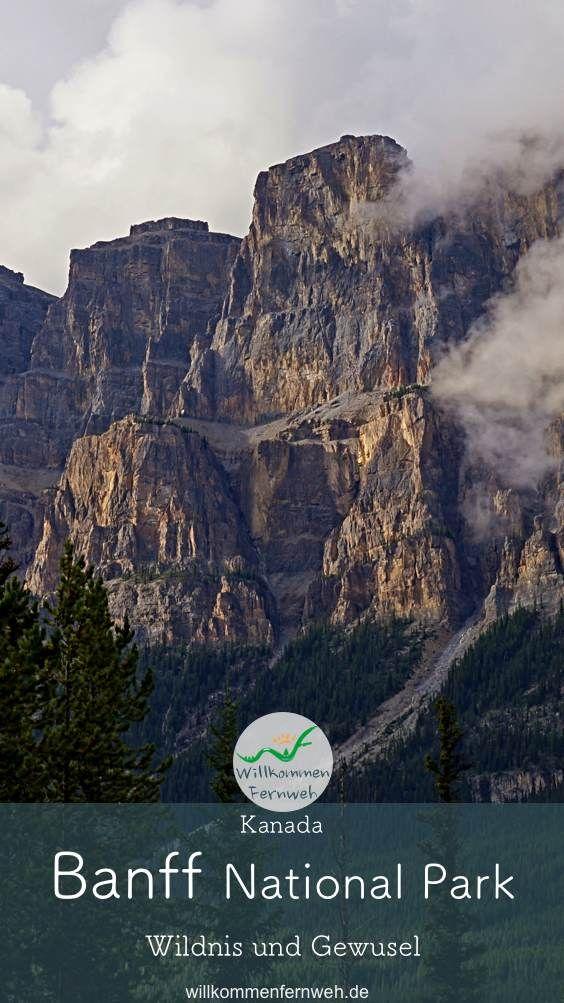 • Wildnis und Gewusel im Banff National Park