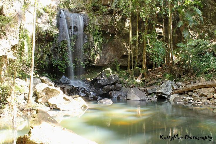 PIECE OF PARADISE || Curtis Falls, Tambourine Mtn QLD