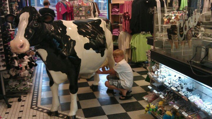 Best Park City Restaurants: Cows Creamery. Eat some of the best ice cream in town & take a picture with the iconic cow!