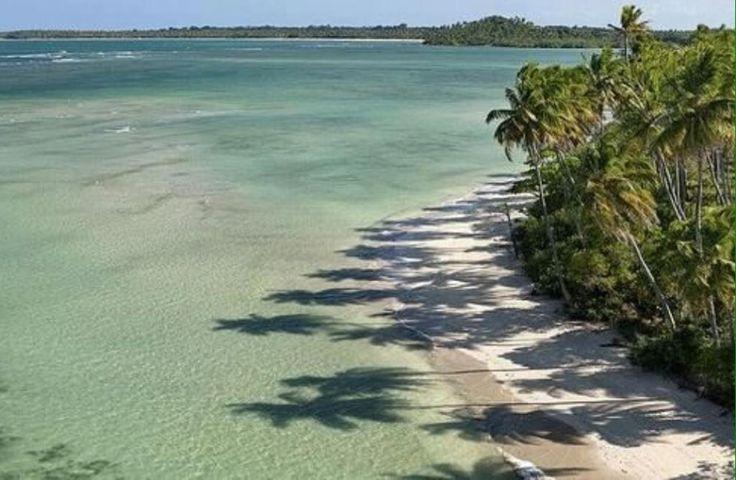 Lotes beira-mar com fantástica localização em uma das melhores praias da região de Boipeba, praia da Boca da Barra.  Veja mais aqui - http://www.imoveisbrasilbahia.com.br/boipeba-lindo-lote-perto-da-boca-da-barra-a-venda