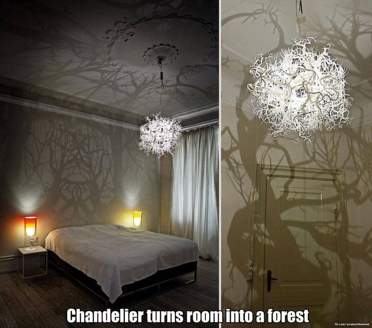 Chandelier that turns room into a forest.  Hells yeah.