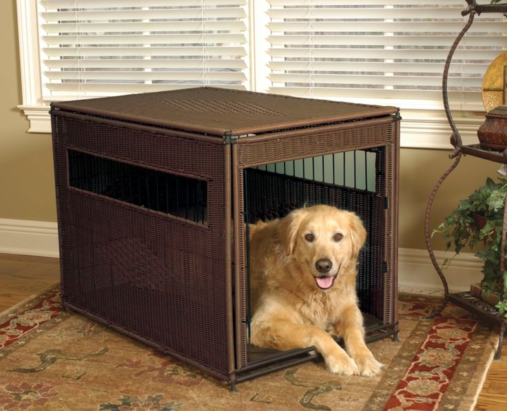 Orthopedic & Heated Dog Beds from PamperMePuppy.com (Starting at $73.95 on 7/8/2016) -->   So your dog is a bit older now, or is simply in need of a little therapy. We know how you feel and appreciate how they may feel. This selection of Orthopedic Dog Beds and Heated Dog Beds will help those aching bones while allowing for some good rest as well.