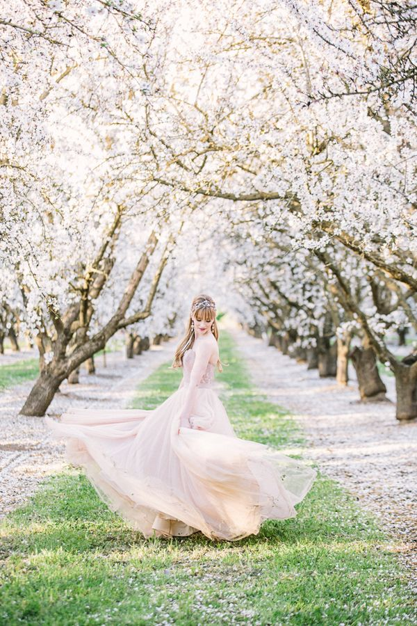 Hello, beautiful blossoms! This shoot that photographers Ginny of Retrospect Images + Brooke Beasley envisioned + whipped up basically encapsulates the beauty of a romantic spring wedding, from the sweet seasonal blooms of California almond orchards to the way various shades of pink complement the greenery around them. What's not to swoon over here? Classic …
