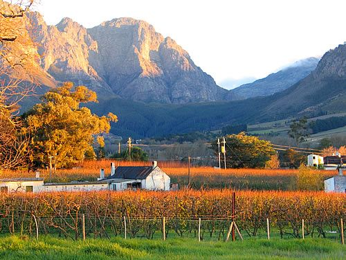 Franschhoek - Ah wine, wonderful South African wine!