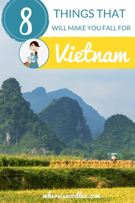 8 Things That Will Make You Fall For Vietnam (1)