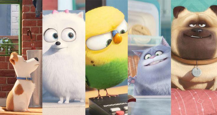 película mascotas, personajes, dibujos - Buscar con Google