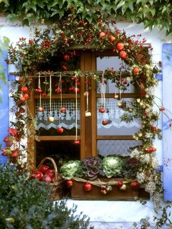 autumnal window