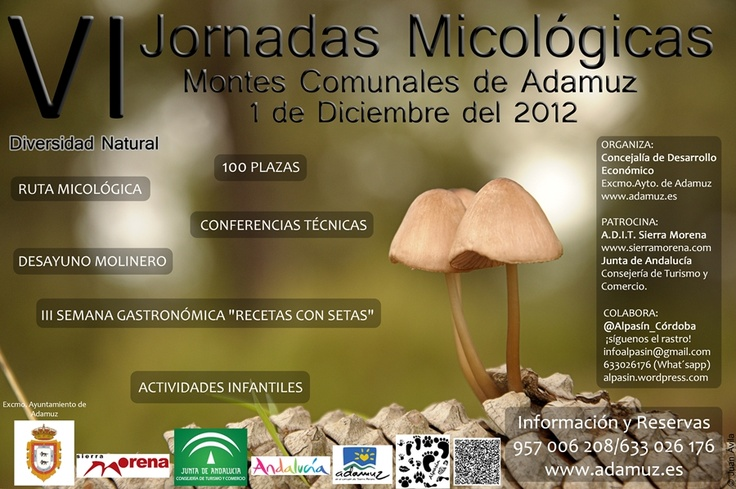 VI Jornadas Micológicas de Adamuz  Toda la información en www.alpasin.wordpress.com