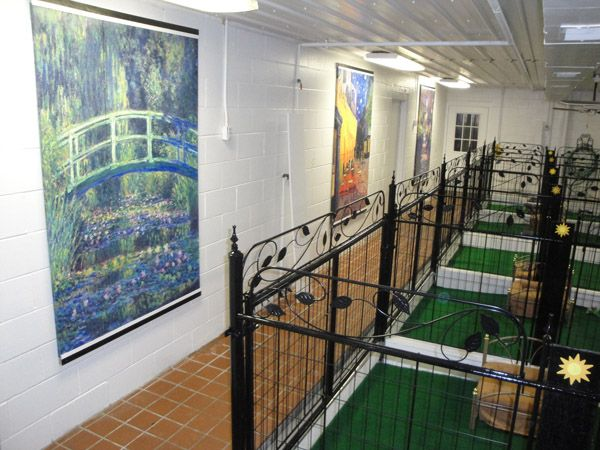 106 best kennel images on pinterest dog kennels for Best dog boarding dc