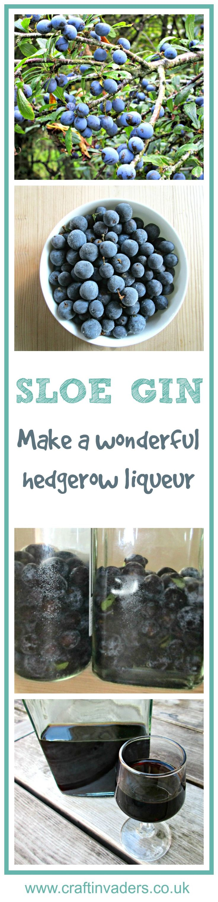 Follow our simple recipe and tips to make a fabulous Sloe Gin. Sloe Gin is easy to make, tastes delicious and makes a perfect home-made present for Christmas.