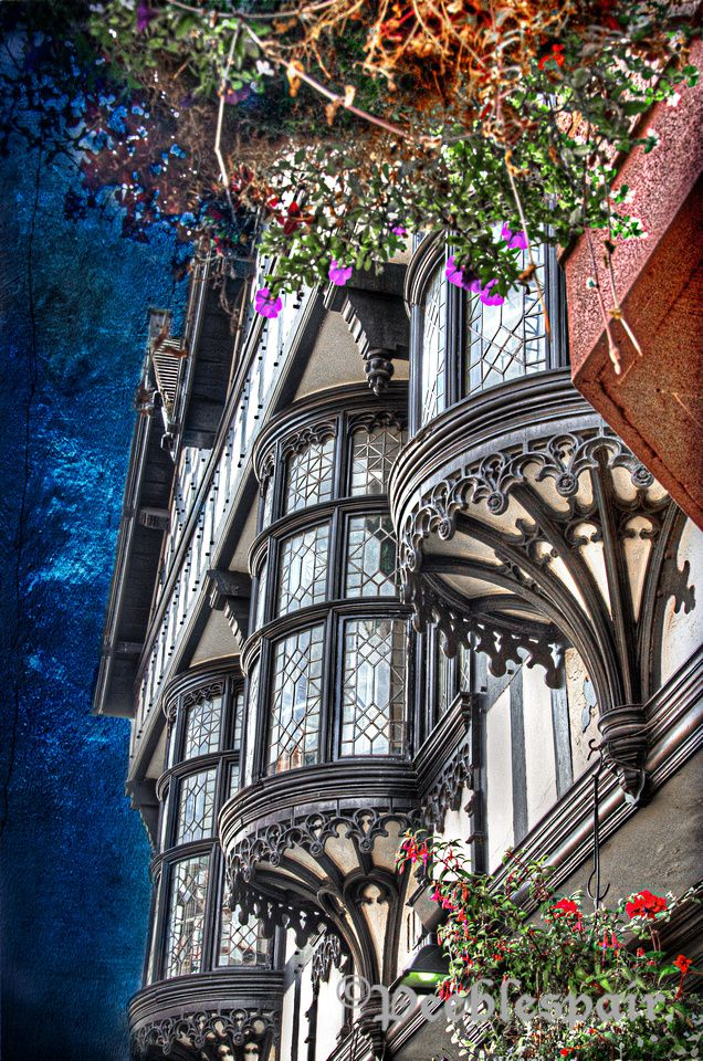 Beautiful half-timber bay windows in Chester, England ᘡɲbᘠ