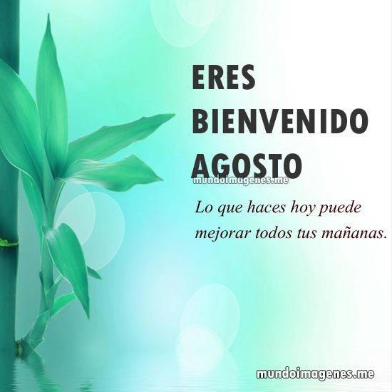 Imagenes Bonitas De Bienvenido Agosto Con Frases - Mundo Imagenes Frases Actuales