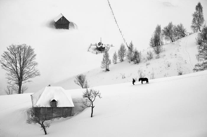 Romanian winter,   photo: Cornel Pufan