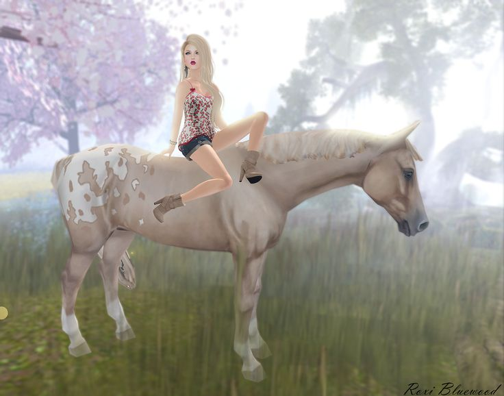 17 best images about sims 3 pets horses on pinterest for Awesome sims