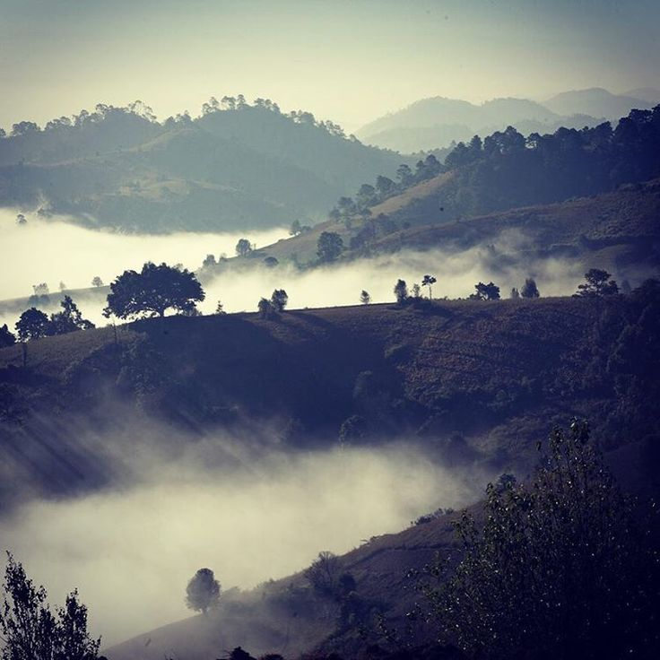 Take me back to Burma.... Morning mist in the hills, trekking in Shan State…