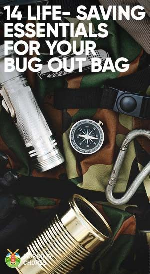 A bug out bag contains vital survival items you need in case a catastrophe hit. We review 14 essential gear to consider when packing your bug out bag.