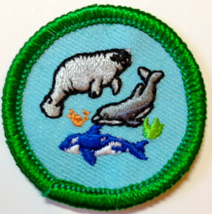 305 best images about girl scout council s own badges on