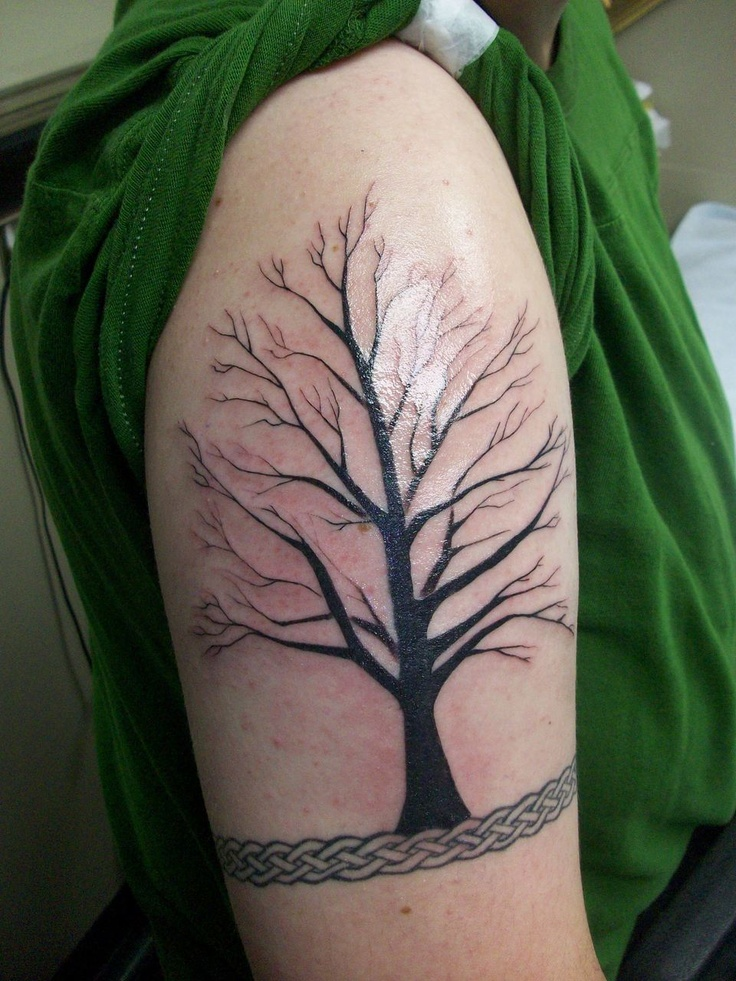 Another Tree of Life