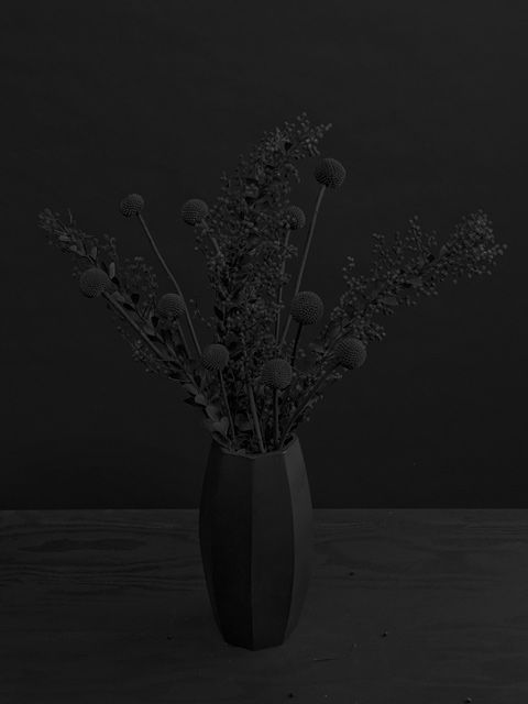 When these flowers are stripped of color, there is a different sense of beauty