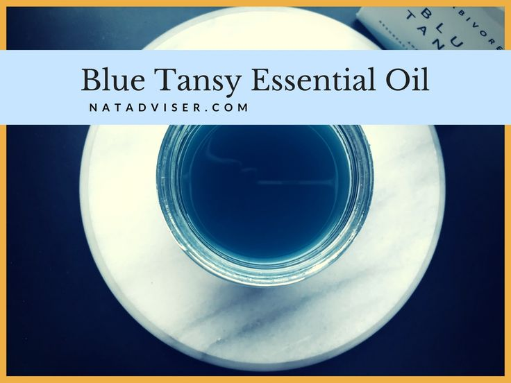 Blue Tansy Essential Oil: What You Have To Know About Tanacetum Annuum - http://natadviser.com/tansy-essential-oil/