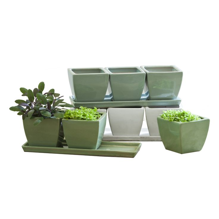 Campania International Linen Herb Pots Planter - Set of 3 - Obtain a small herb garden in your kitchen with the Campania International Linen Herb Pots Planter - Set of 3 . Constructed of terra cotta,   Perfect for our client who loves to cook and grow his own ingredients. These will be placed on the shelves by the window