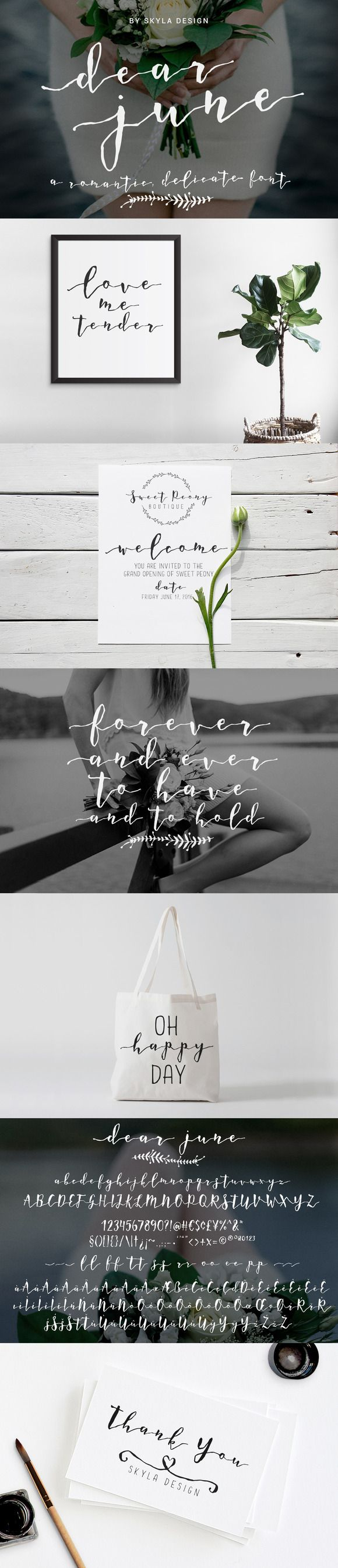 A Romantic font - Dear June by skyladesign on @creativemarket