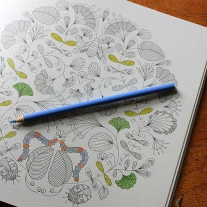 74 Best Adult Coloring Books Images On Pinterest
